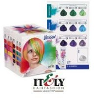 Itely Hairfashion Blossom Box